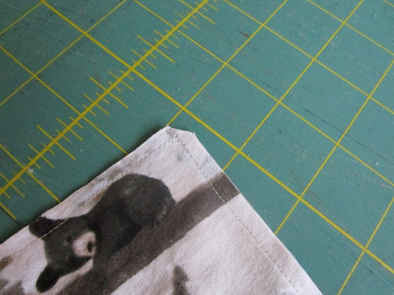 19 Make a diagonal cut on the corners